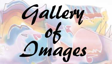 gallery of images